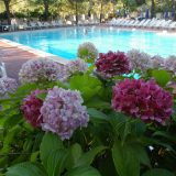 holiday villa rentals. panorama-bello-swimming pool