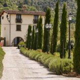 Entrance way with cypresses and lavander to Villa Baroncino