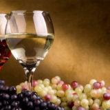 wine-tours-at-villa-san-crispolto. free time activities